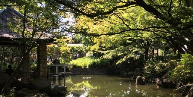杉並区おすすめ介護付き有料老人ホーム6選(東京都)