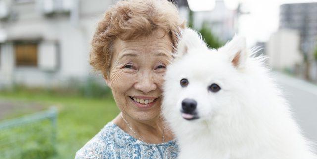 ペットと暮らせる|都内おすすめ高齢者向け住宅4選